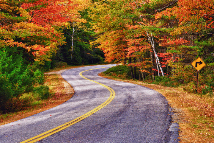 winding country road in Maine